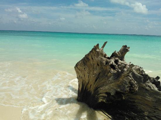 kaala-pathar-beach